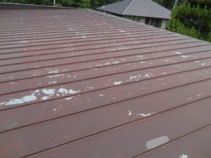 屋根塗装 (3)